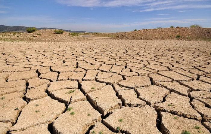 Küresel ekilebilir ve üretken alan azalıyor