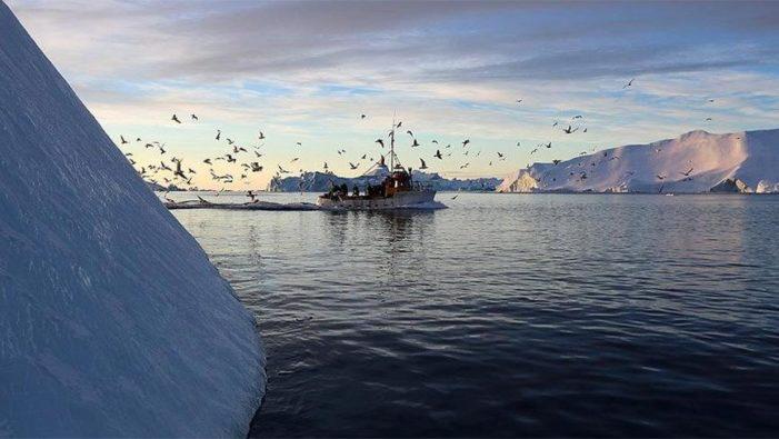 Grönland'da temmuz ayında 197 milyar ton buz eridi