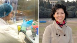 Zhengli: 'Corona virüsü salgını buz dağının görünen yüzü'