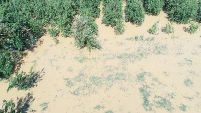 Bursa'da sel felaketi: Hayatını kaybedenlerin sayısı artıyor!