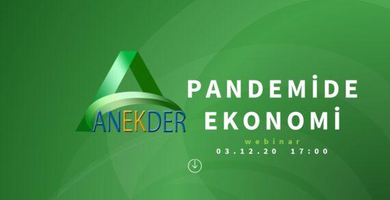 'ANEKDER'in düzenlediği 'Pandemide Ekonomi' webinarı ses getirdi