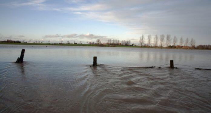 Belçika'da sel felaketi: Şiddetli yağış – seller – yeni normal mi?