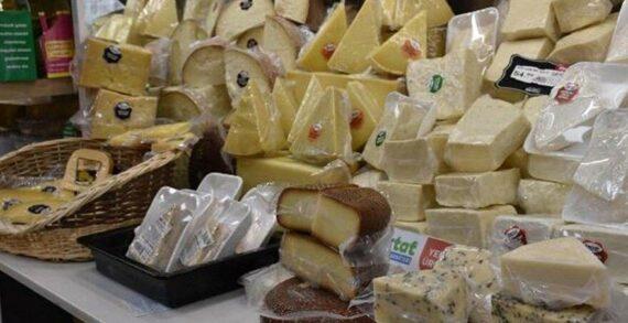 Tarihi geçmiş peynirleri toplayıp kalıba döküyorlar!..