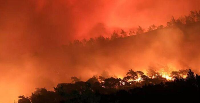 İzmir'de Menderes orman yangını davasında güvenlik kameraları incelenecek